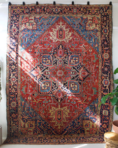 pile rug, Turkish rug, vintage rug, portland, rug shop, bright colors, wild shaman, soft rug, bold color, Portland, Oregon, rug store, rug shop, local shop, Persian rug