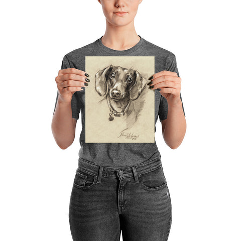 Dachshund Art Print Portrait. Print on  thick and durable matte paper. Doxie-7 Poster.