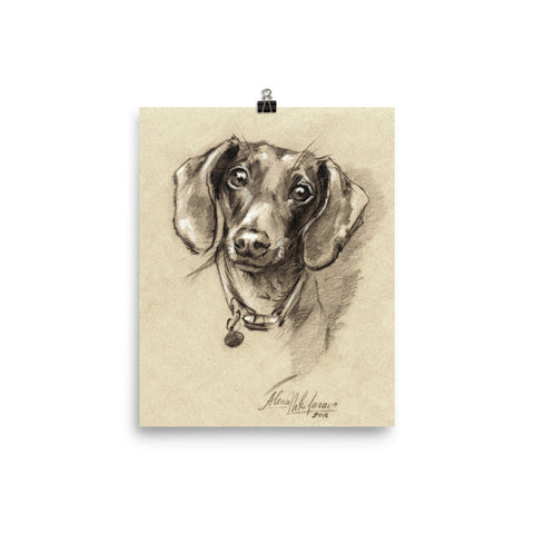 Dachshund Art Print Portrait • Slightly glossy photo paper poster • Doxie-7 Poster.