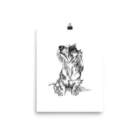 Wire Dachshund Art Print Portrait • Slightly Glossy Photo Paper Poster