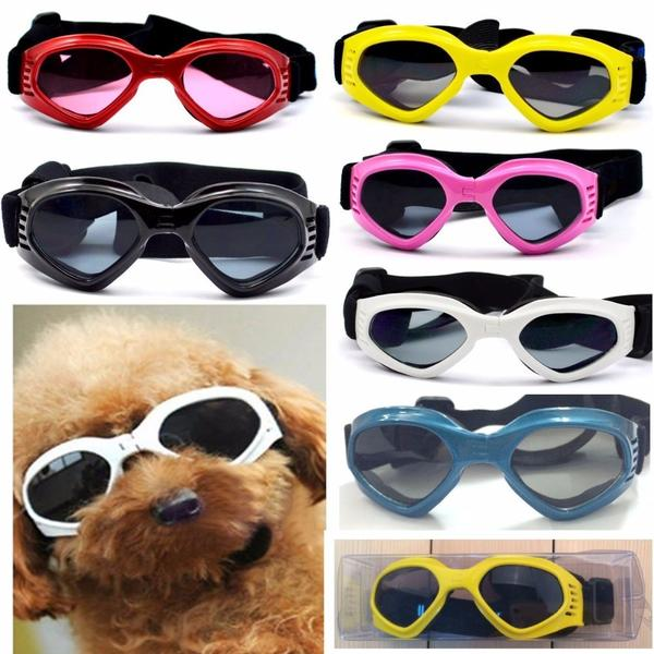 Why Dogs Can Benefit From Wearing Goggles/Sunglasses