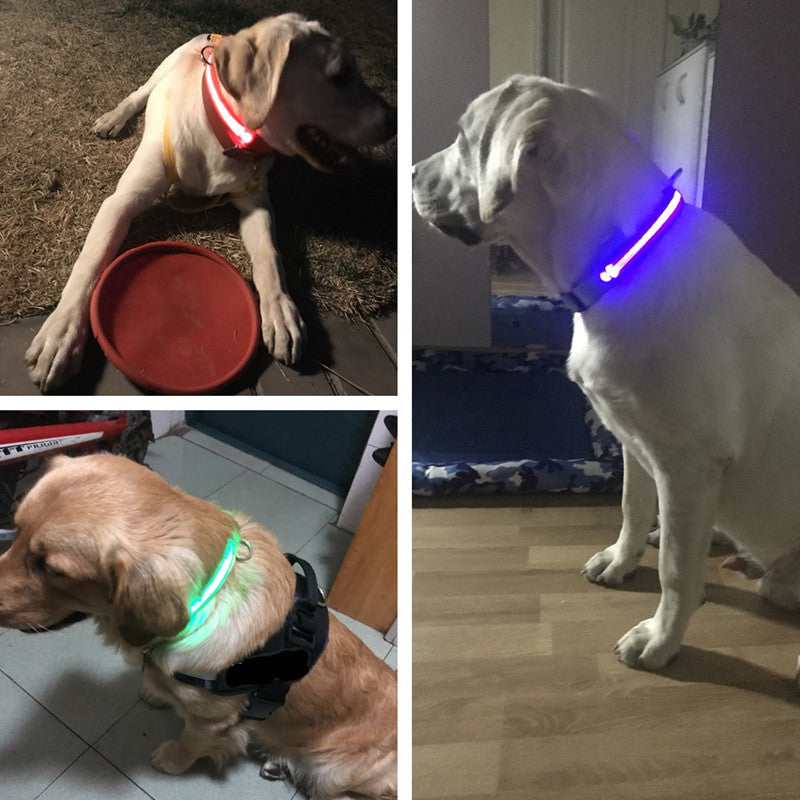 Image result for USB Rechargeable Glow LED Dog Collar+shopify