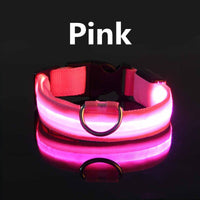 Glow Safety Pet Collar