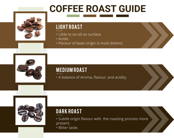 Coffee Roast Guide Infographic