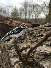 Felt Hairy Woodpecker