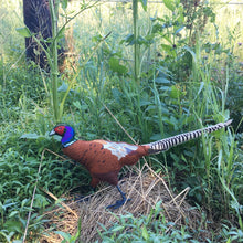 Felt Ring-necked Pheasant
