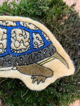Embroidered Wool Turtle Patch