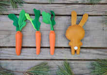 Felt Stuffed Bunny and Carrot Set