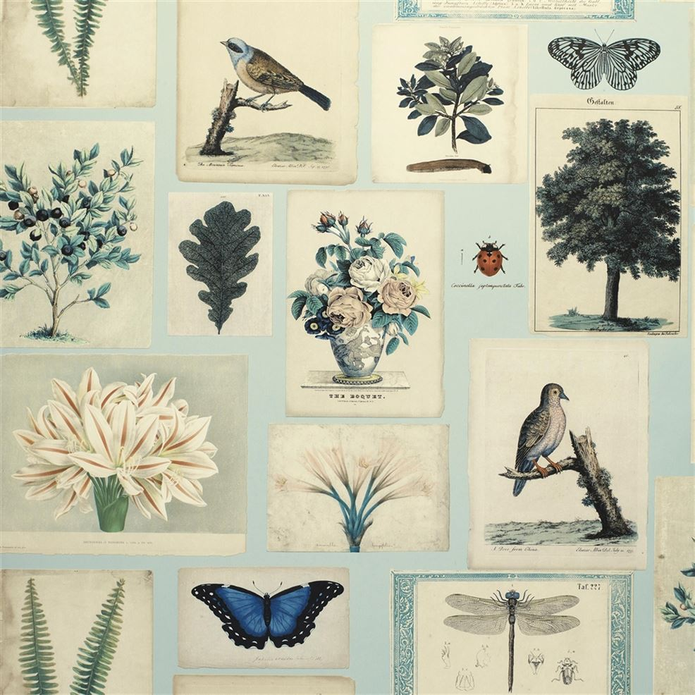 Flora & Fauna Cloud Blue PJD6002/02 Wallpaper