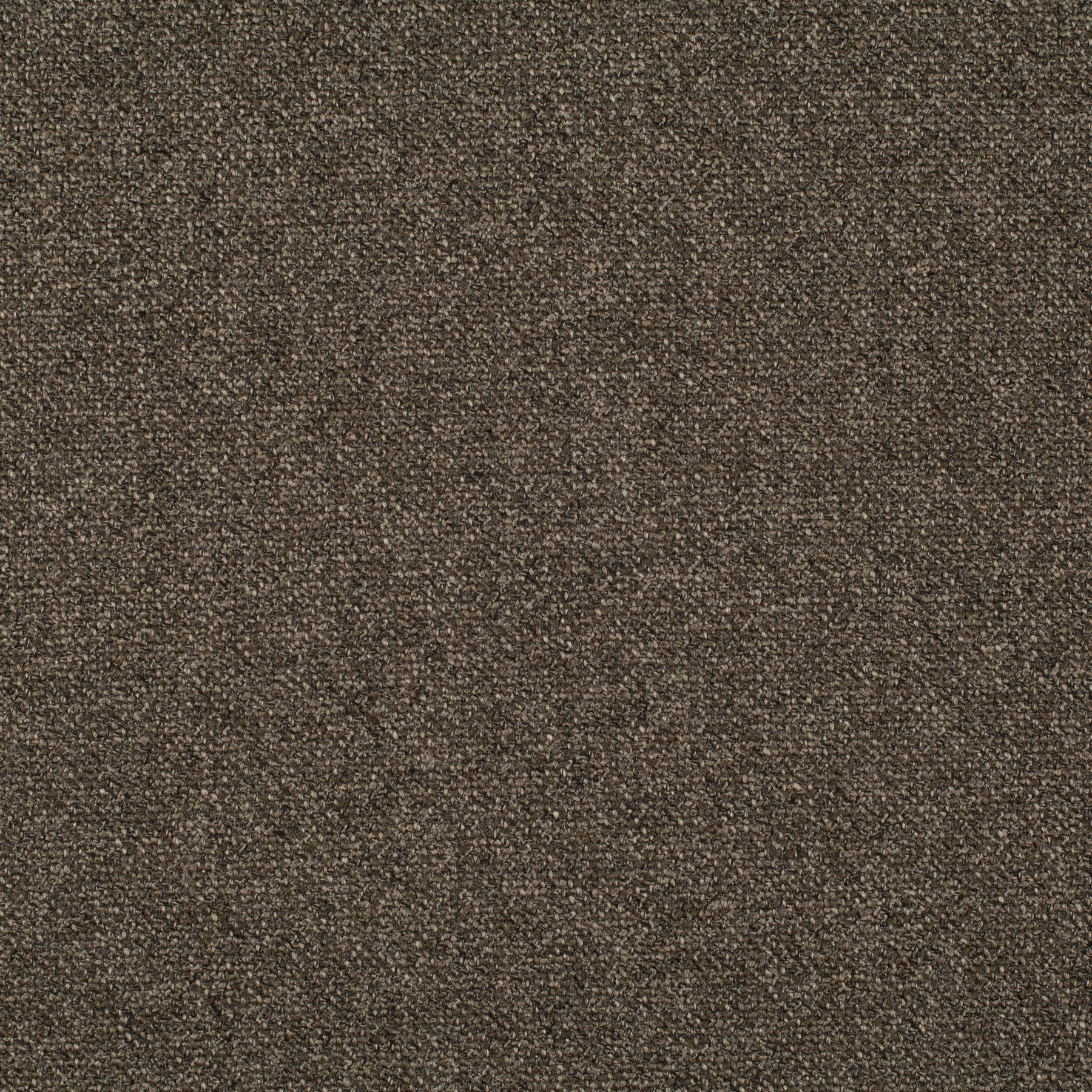 Bonsai CH2955-021 Fabric