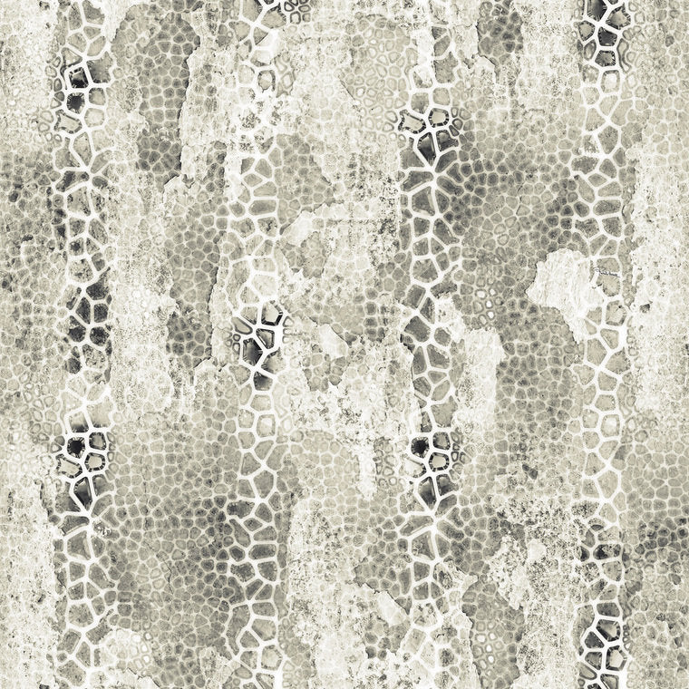 Giraffa B RC16207 Wallpaper