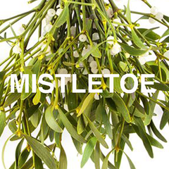 Mistletoe Scented Christmas candles