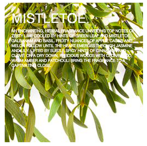 Mistletoe scented candles - green leaf, lime and mistletoe