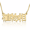 """Chinese"" Name Necklace"