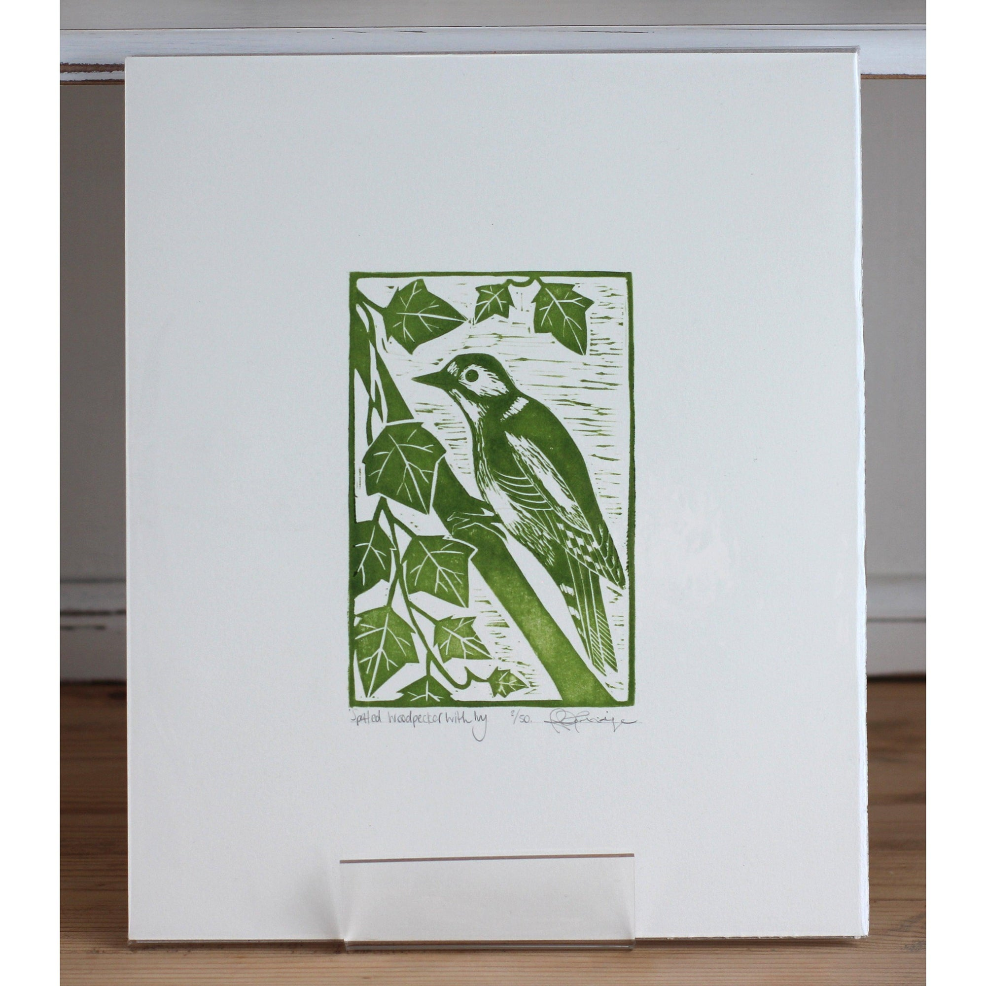 'Spotted woodpecker with Ivy' by printmaker, Rhys Partridge, available at Padstow Gallery, Cornwall