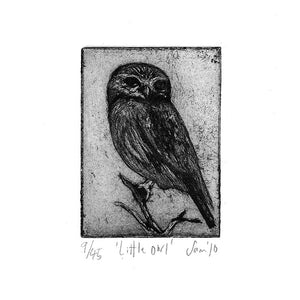 'Little Owl' zinc plate etching by Sam Marshall available at Padstow Gallery, Cornwall