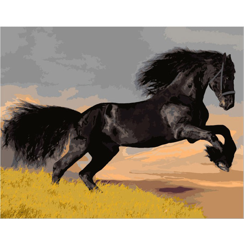 DIY Painting By Numbers - Black Beauty (16