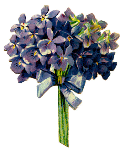 Victorian Bouquet of Violets Tied with a Blue Ribbon