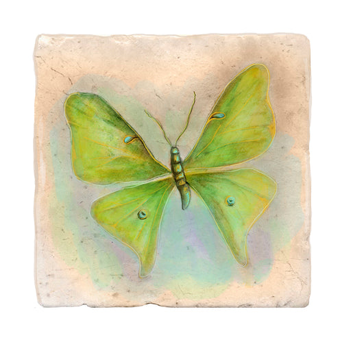 Bright Green Butterfly Tile Art Stone Coasters by Tiny Quail