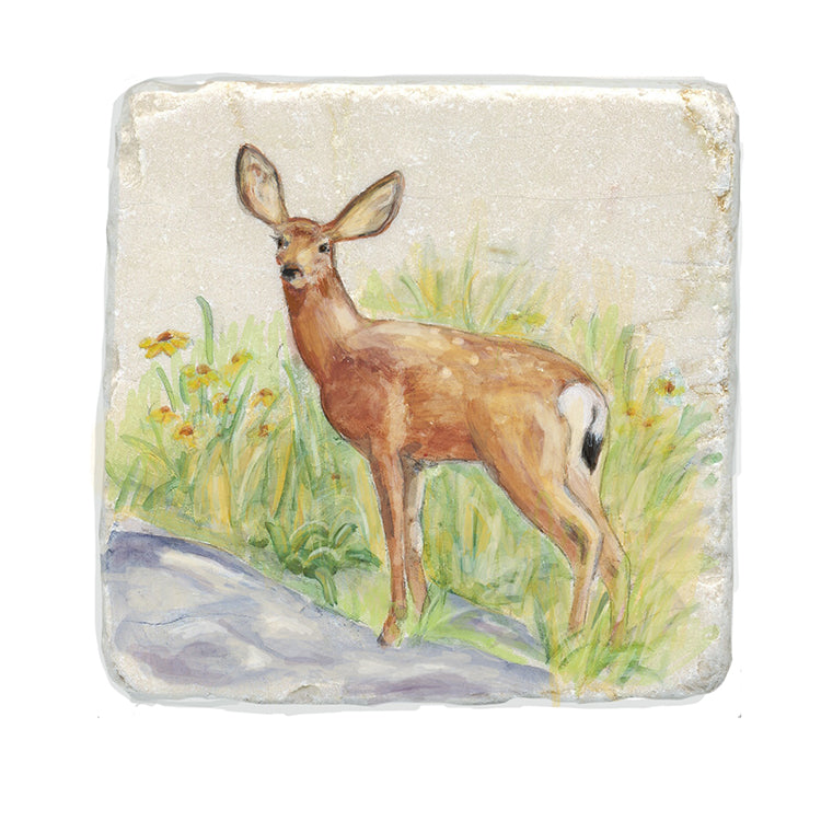 Deer Stone Coasters by Tiny Quail