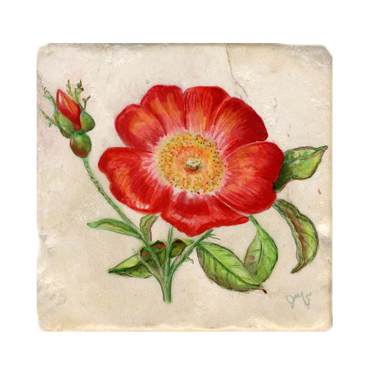 Wild Rose Tile Art Stone Coasters by Tiny Quail