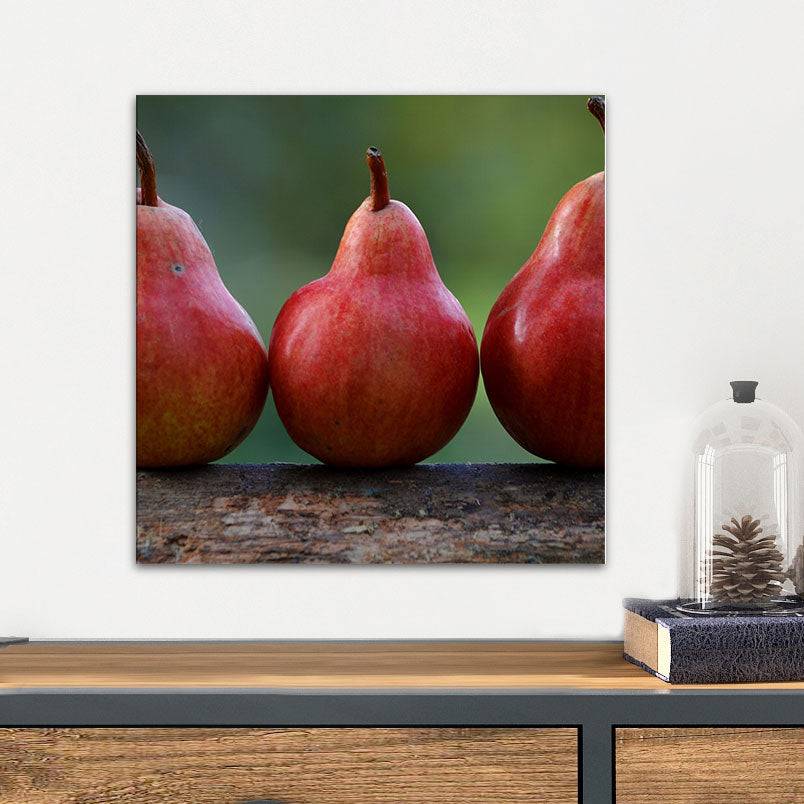 Red Pears on Railing Glass Photo Wall Art From Tiny Quail