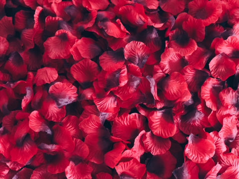 Image of red rose petals for romantic anniversary decorations