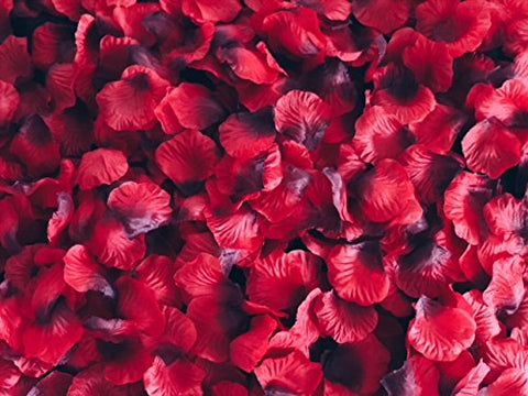 Image of red rose petals for romantic night or proposal decorations