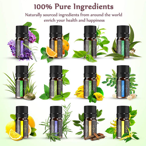 Set of 12 Assorted Essential Oils