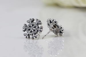 Sterling Silver Ice Crystal Silver Earrings Studs Earring