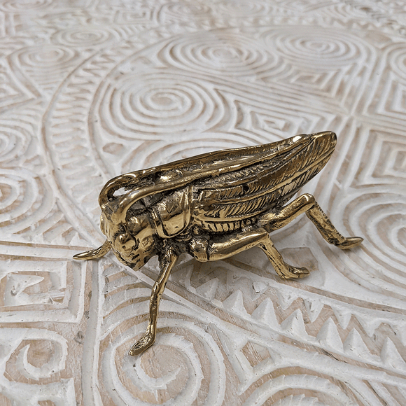 Brass Bug - Grasshopper
