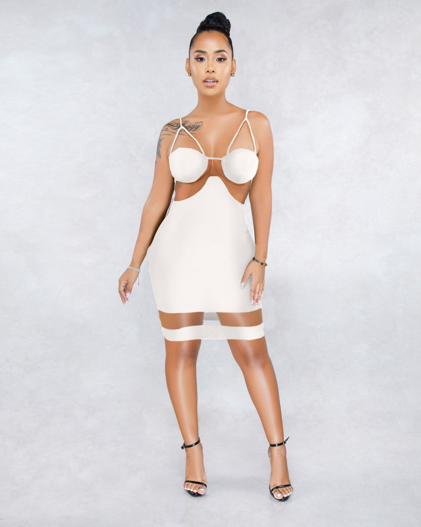 Sexy Mesh Bodycon Party Dress