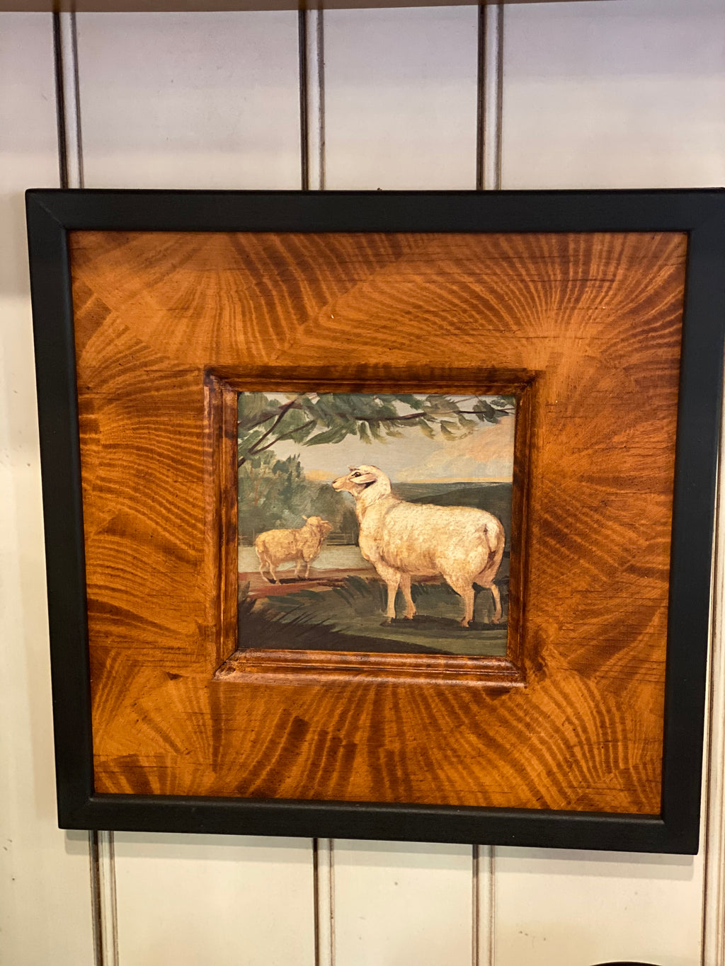 Small Sheep Framed Art