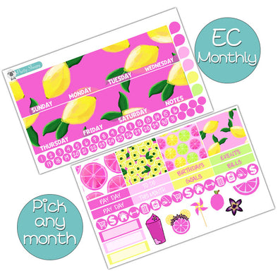 Violet Lemonade Monthly Kit for Erin Condren Planner - Pick ANY Month!