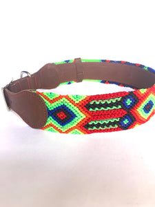 Rumba - Dog collar ( XL) - colibrilove