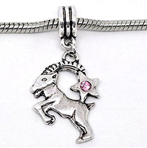 Pink Rhinestone Capricorn Zodiac Dangle Charm