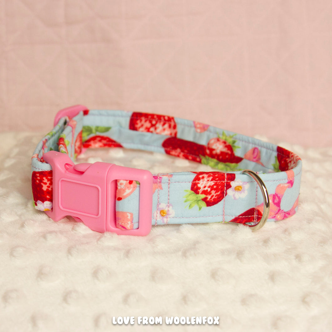 Spring Pup Collar - 12 inches to 18.5 inches