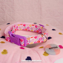 Candy Pup Collar - 13 to 19 inches