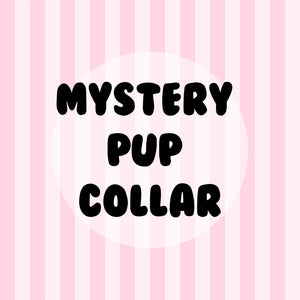 Mystery Pup Collar
