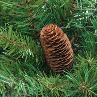 "4' x 30"" Dakota Red Pine Full Artificial Christmas Tree with Pine Cones - Unlit"