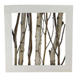 "21.5"" Mixed Branches in White Wood Box Table Top Decoration"