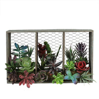 "10"" Artificial Mixed Succulents Arrangement in Wood with Chicken Wire Box Wall Decor"