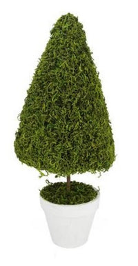 "20.5"" Green Reindeer Moss Potted Artificial Spring Floral Topiary Tree"