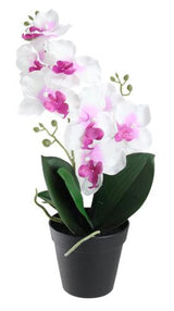 "16.5"" Potted White Phalaenopsis Orchid Artificial Silk Flower Arrangement"