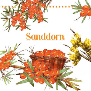 Cocktail Napkin - Sea Buckthorn (Collection: 13309535)