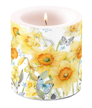 Candle SMALL - Classic Daffodils - COLLECTION