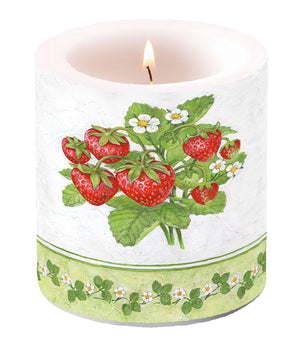 Candle SMALL - Season Fruit - COLLECTION