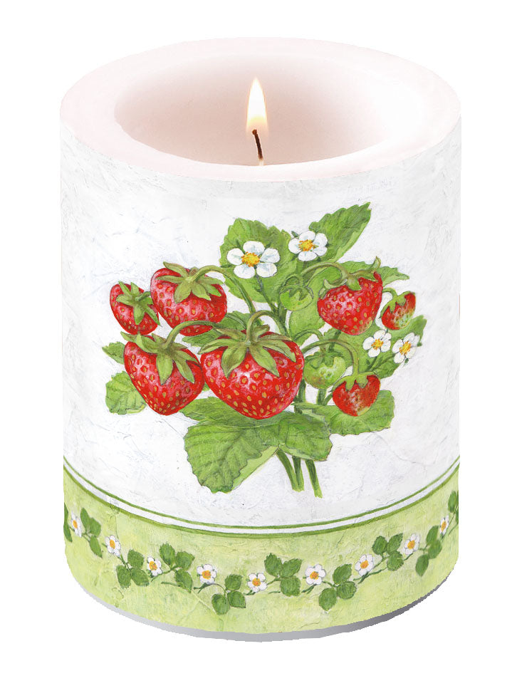 Candle LARGE - Season Fruit - COLLECTION