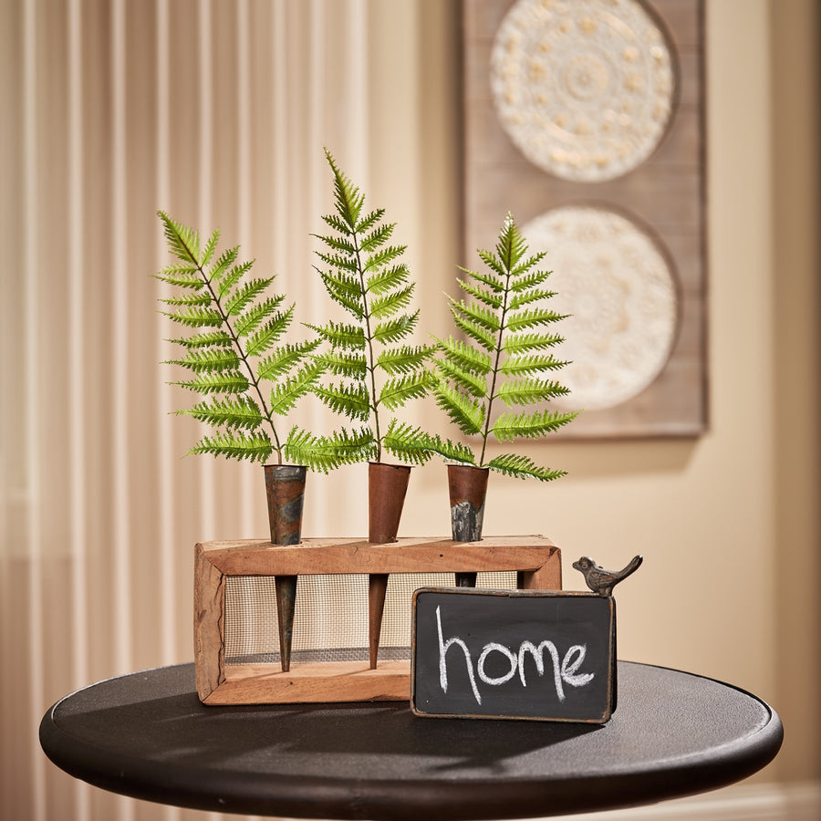 Forest Fern Bundle, Set/3