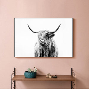 Highland Cow - Unframed